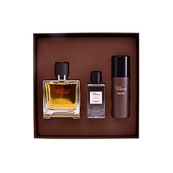 Cofre Terre D'Hermes Pure Perfume